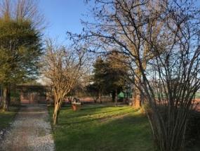 Vinter forar panorama